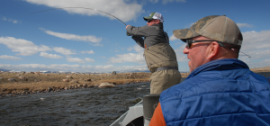 Madison River Fly Fishing April