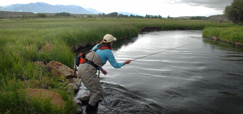 Blue Ribbon Trout Streams of Montana