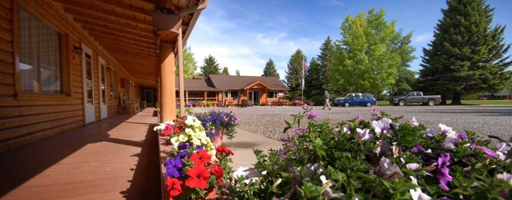 Flowers At The Rainbow Valley Lodge In Ennis Montana