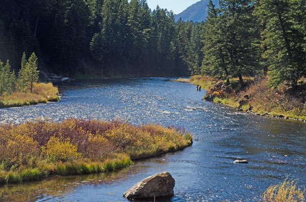 Madison River Below Hebgen Lake, West Yellowstone MT
