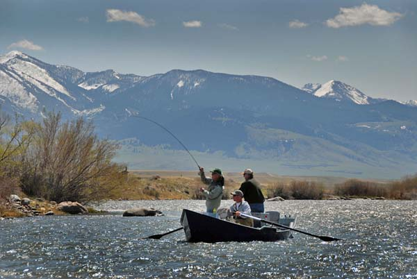 Catching Fishing on the Madison River in Spring